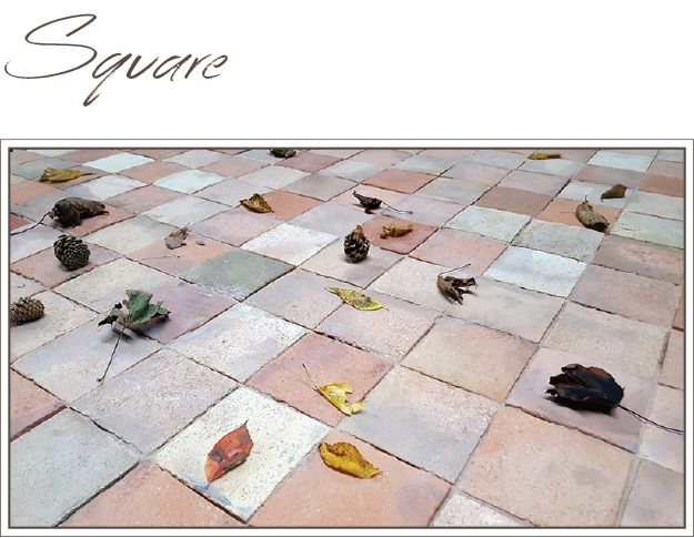 Square Reclaimed Tiles
